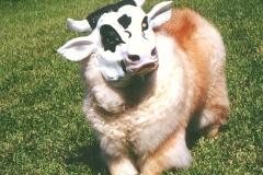 cowhead10-2k