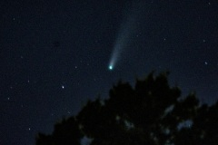 Comet-NEOWISE
